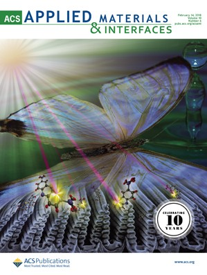 ACS Applied Materials and Interfaces: Volume 10, Issue 6