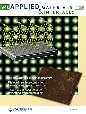 ACS Applied Materials & Interfaces: Volume 2, Issue 2