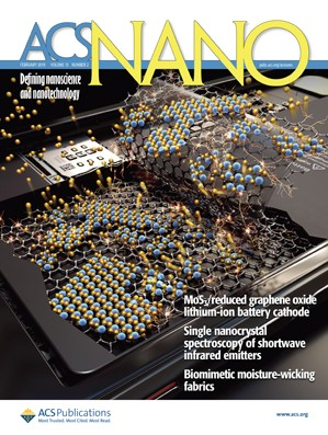 ACS Nano : Volume 13, Issue 2
