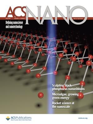 ACS Nano: Volume 10, Issue 6