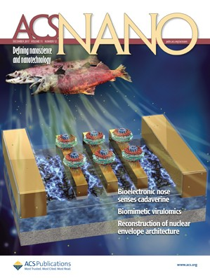 ACS Nano: Volume 11, Issue 12