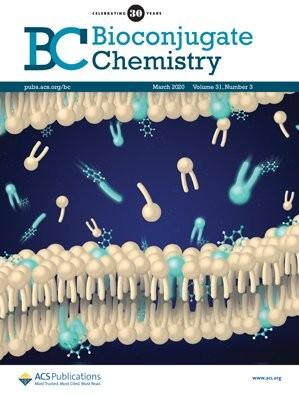 Bioconjugate Chemistry: Volume 31, Issue 3