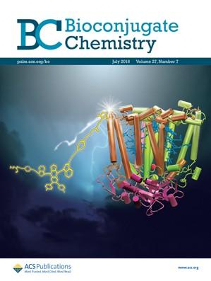 Biconjugate Chemistry: Volume 27, Issue 7