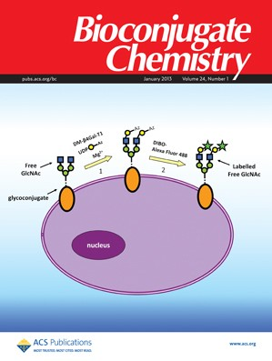 Bioconjugate Chemistry: Volume 24, Issue 1