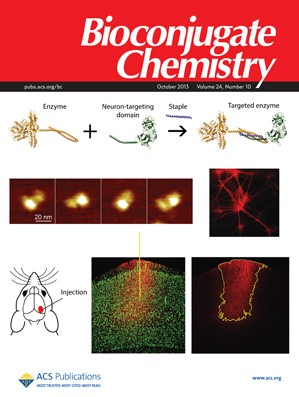 Bioconjugate Chemistry: Volume 24, Issue 10
