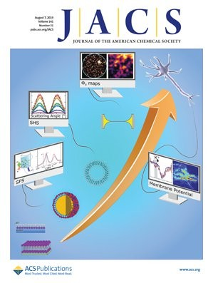 Journal of the American Chemical Society: Volume 141, Issue 31