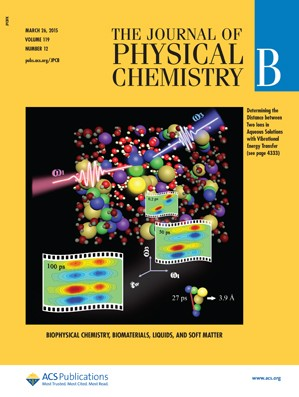 Journal of Physical Chemistry B: Volume 119, Issue 12