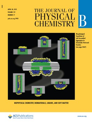Journal of Physical Chemistry B: Volume 119, Issue 17