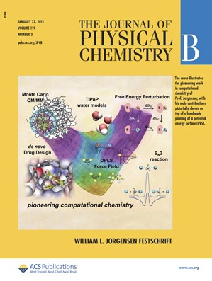 Journal of Physical Chemistry B: Volume 119, Issue 3