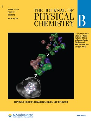 Journal of Physical Chemistry B: Volume 119, Issue 42