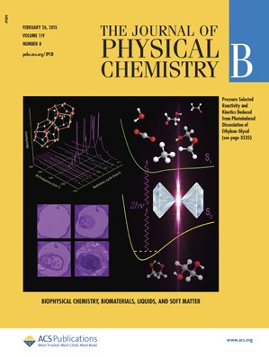 Journal of Physical Chemistry B: Volume 119, Issue 8