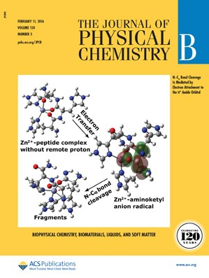 The Journal of Physical Chemistry B: Volume 120, Issue 5