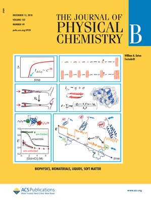 Journal of Physical Chemistry B: Volume 122, Issue 49