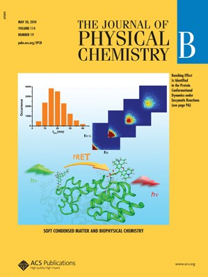 The Journal of Physical Chemistry B: Volume 114, Issue 19