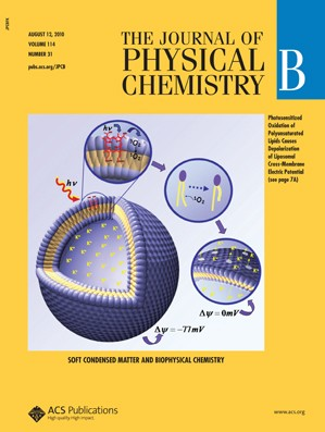 The Journal of Physical Chemistry B: Volume 114, Issue 31