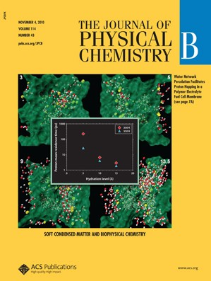 The Journal of Physical Chemistry B: Volume 114, Issue 43