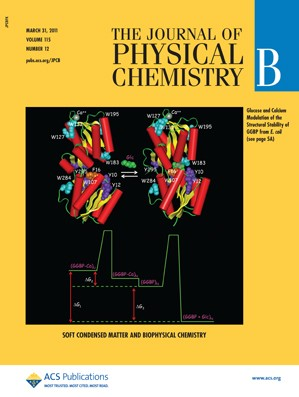 The Journal of Physical Chemistry B: Volume 115, Issue 12