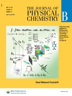 The Journal of Physical Chemistry B: Volume 115, Issue 18