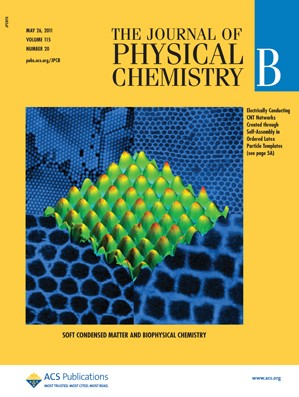 The Journal of Physical Chemistry B: Volume 115, Issue 20