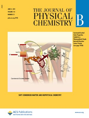 The Journal of Physical Chemistry B: Volume 115, Issue 21