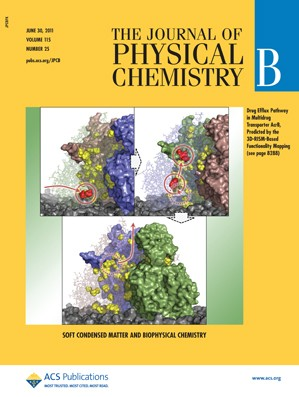 The Journal of Physical Chemistry B: Volume 115, Issue 25
