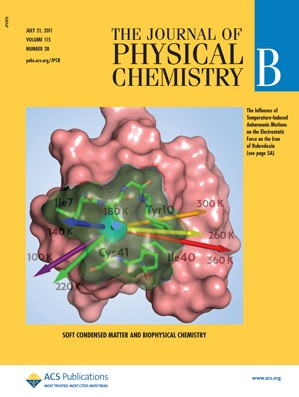 The Journal of Physical Chemistry B: Volume 115, Issue 28