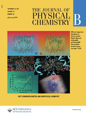 The Journal of Physical Chemistry B: Volume 115, Issue 38