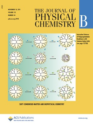 The Journal of Physical Chemistry B: Volume 115, Issue 44
