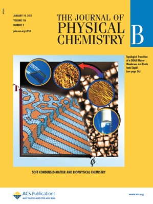 The Journal of Physical Chemistry B: Volume 116, Issue 2