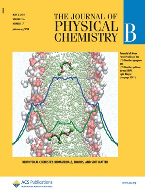 The Journal of Physical Chemistry B: Volume 116, Issue 17