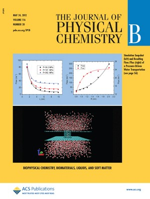The Journal of Physical Chemistry B: Volume 116, Issue 20