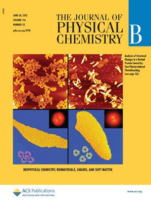 The Journal of Physical Chemistry B: Volume 116, Issue 25