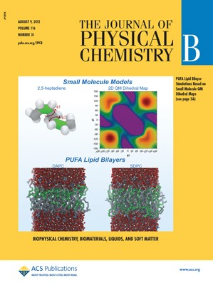 The Journal of Physical Chemistry B: Volume 116, Issue 31
