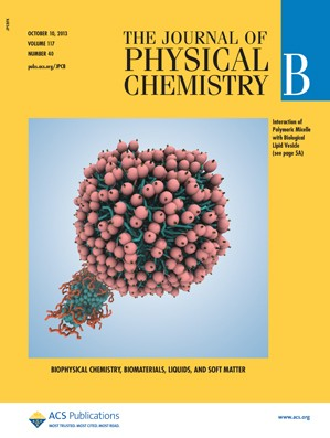 The Journal of Physical Chemistry B: Volume 117, Issue 40