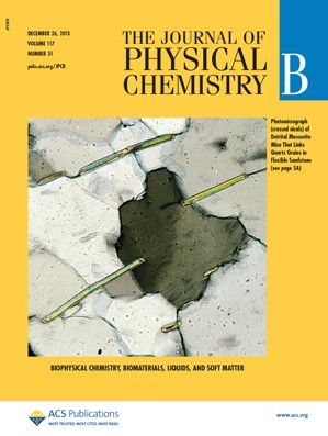 The Journal of Physical Chemistry B: Volume 117, Issue 51