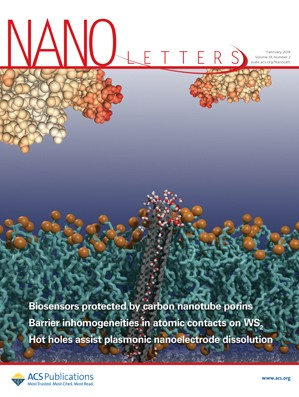 Nano Letters: Volume 19, Issue 2