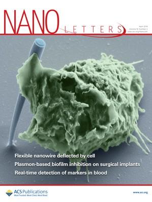 Nano Letters: Volume 19, Issue 4