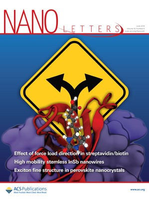 Nano Letters: Volume 19, Issue 6