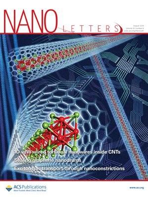 Nano Letters: Volume 19, Issue 8