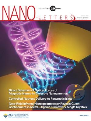 Nano Letters: Volume 20, Issue 10