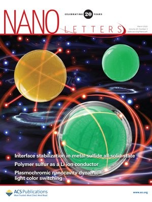Nano Letters: Volume 20, Issue 3