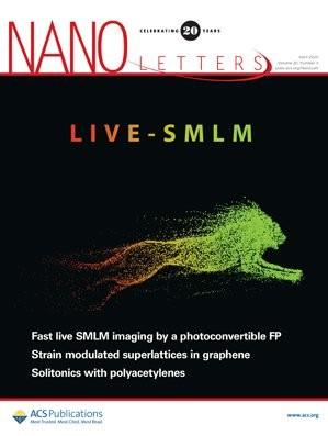 Nano Letters: Volume 20, Issue 4
