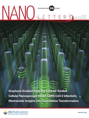 Nano Letters: Volume 20, Issue 7