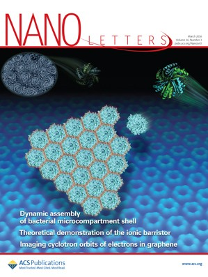 Nano Letters: Volume 16, Issue 3