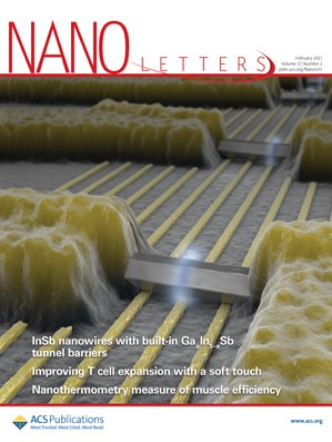Nano Letters: Volume 17, Issue 2