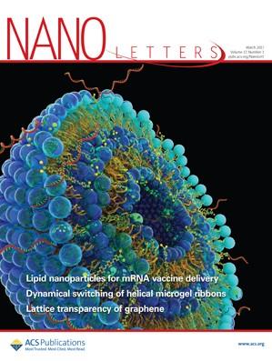 Nano Letters: Volume 17, Issue 3