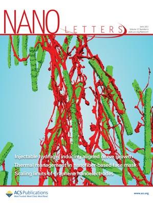 Nano Letters: Volume 17, Issue 6