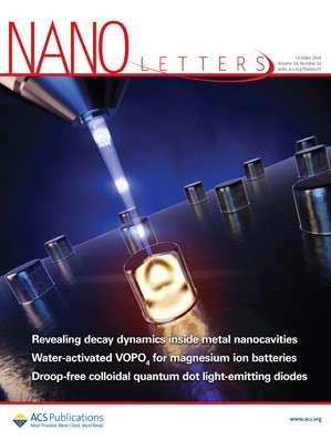 Nano Letters: Volume 18, Issue 10