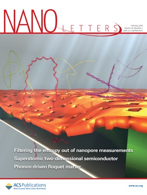 Nano Letters: Volume 18, Issue 2