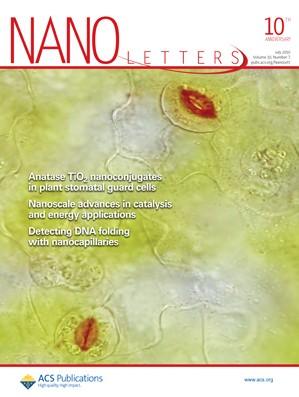 Nano Letters: Volume 10, Issue 7